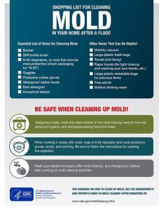 8 Tips To Clean Up Mold Ping List For Cleaning Materials