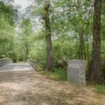 Moores Creek 4